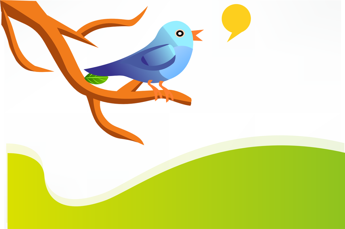 Why You Need Twitter For Your Online Business